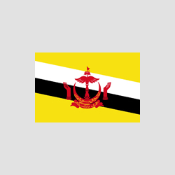 brunei - edited.png