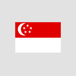 singapore - edited.png